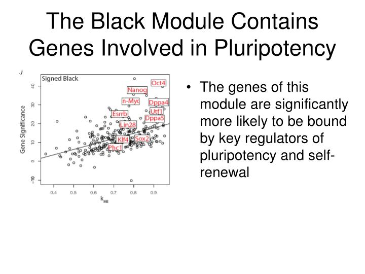 The Black Module Contains Genes Involved in Pluripotency