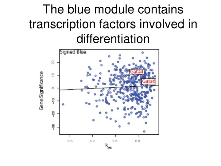 The blue module contains transcription factors involved in differentiation