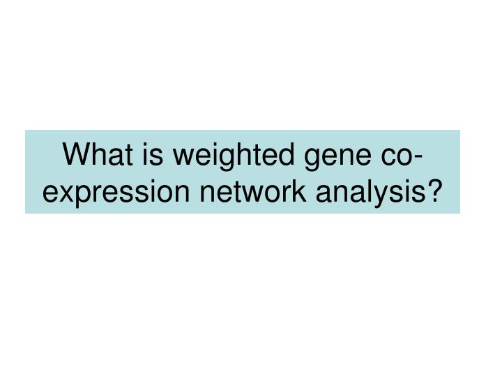 What is weighted gene co-expression network analysis?