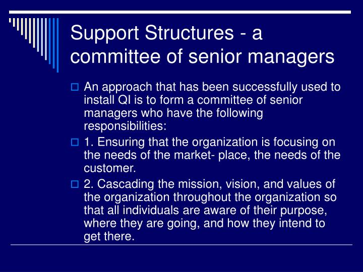 Support Structures - a committee of senior managers