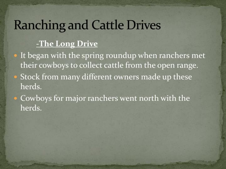 Ranching and Cattle Drives