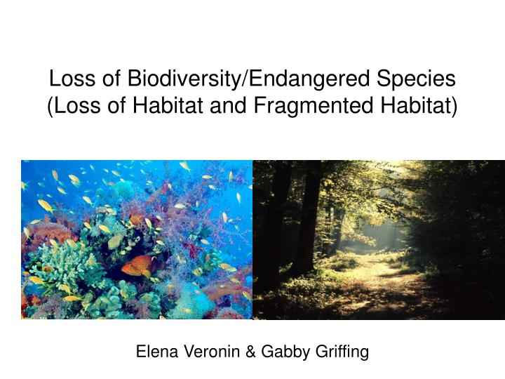 loss of species Biodiversity at risk biologists estimate that there are between 10 and 100 million species living on earth at current rates of extinction, over half of these.