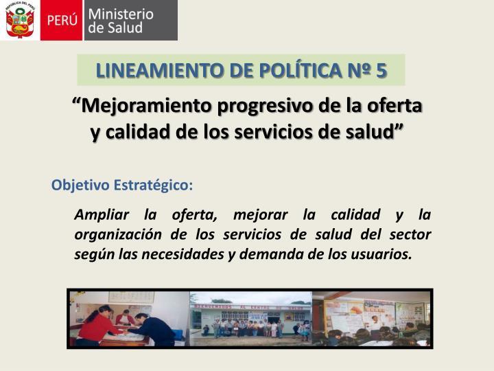 LINEAMIENTO DE POLÍTICA Nº 5