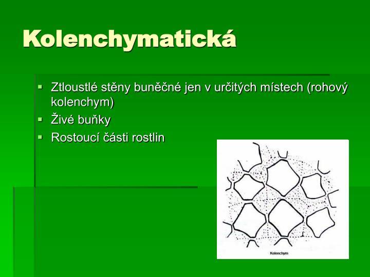 Kolenchymatická