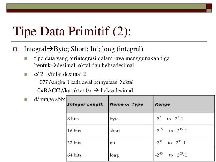 Tipe Data Primitif (2):