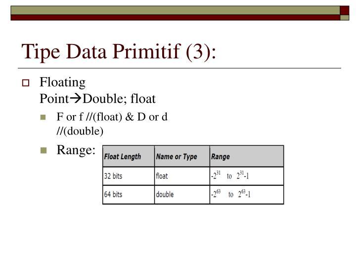 Tipe Data Primitif (3):