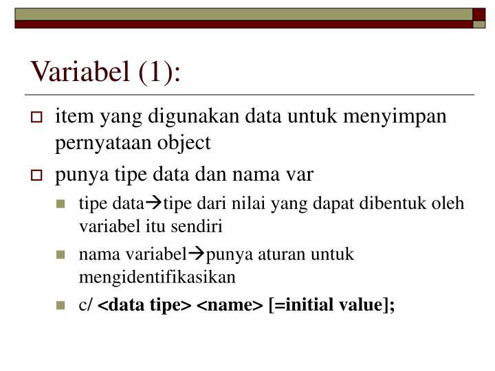 Variabel (1):
