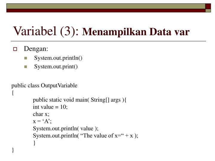 Variabel (3):