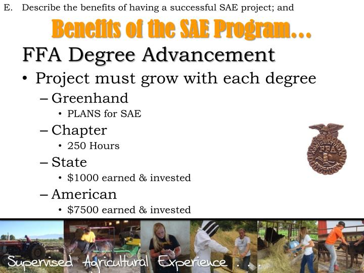ffa sae projects Supervised agrciutul ra l expereince handbook resource cd- illinois association ffa illinois core curriculum cd- project of the sae project is a.