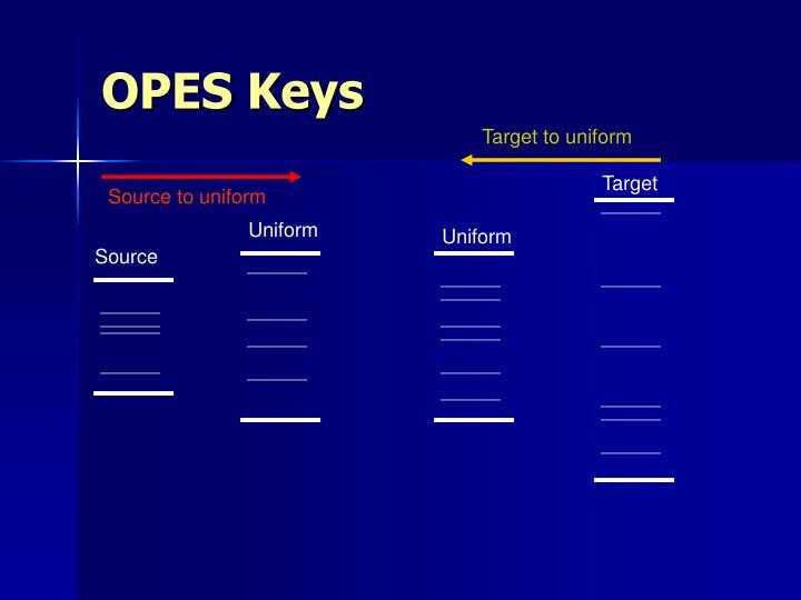 OPES Keys