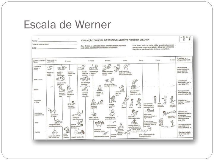 Escala de Werner