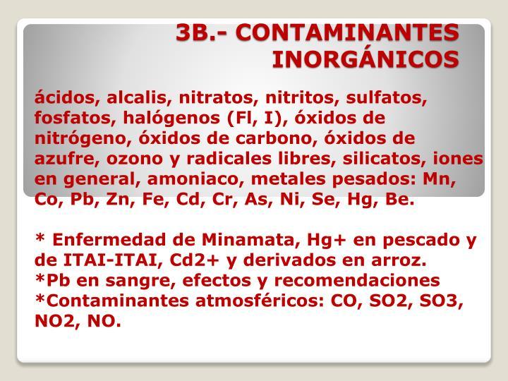 3B.- CONTAMINANTES INORGÁNICOS