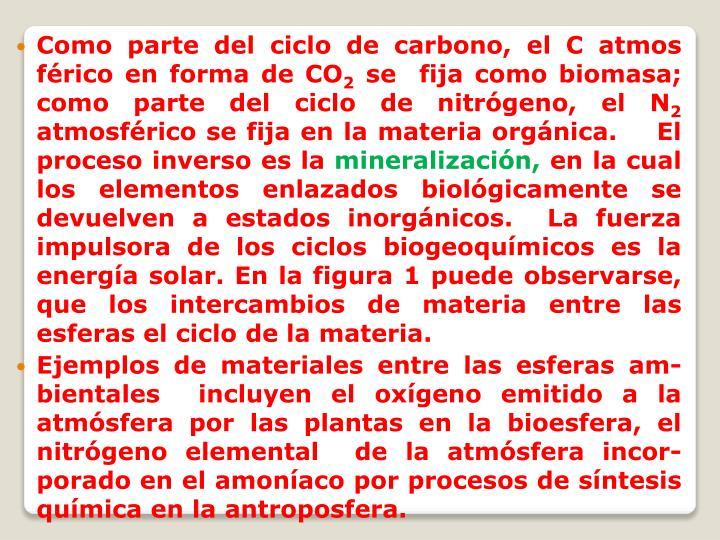 Como parte del ciclo de carbono, el C