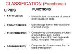 classification functional