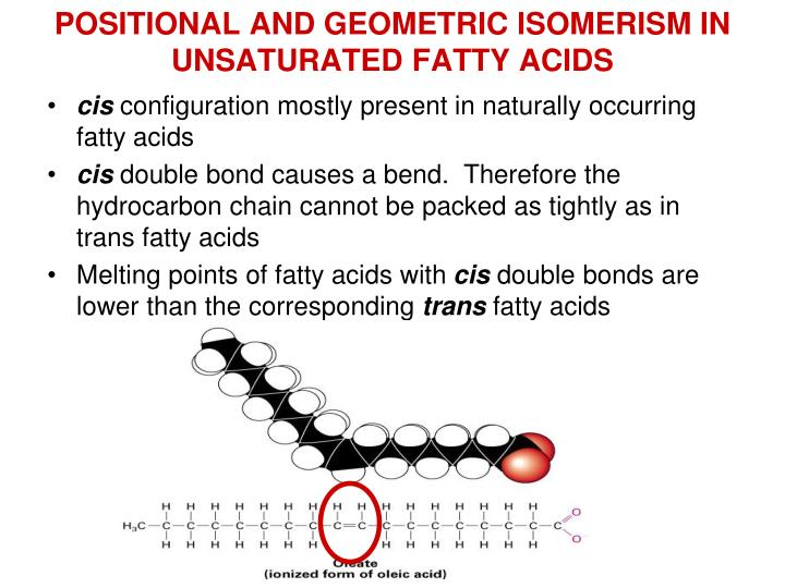 POSITIONAL AND GEOMETRIC ISOMERISM IN UNSATURATED FATTY ACIDS