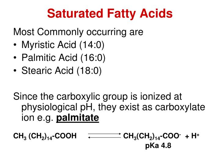 Saturated Fatty Acids