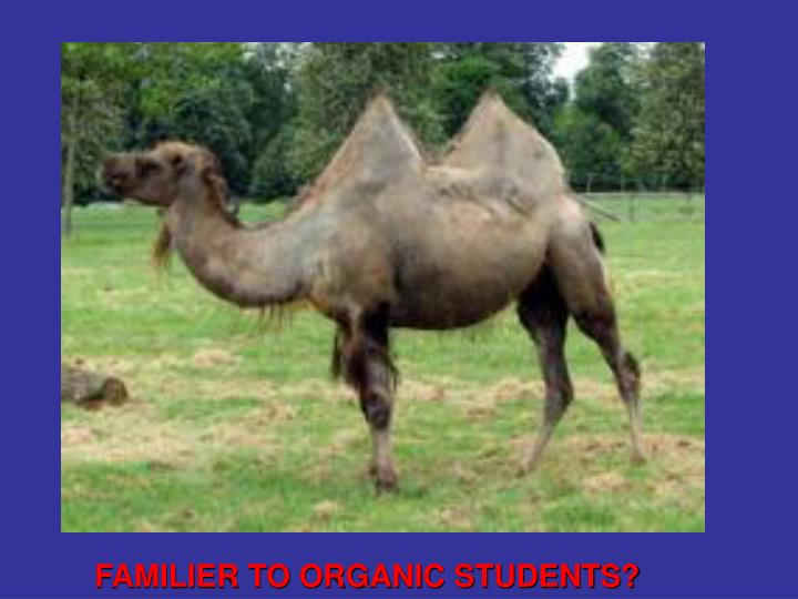 FAMILIER TO ORGANIC STUDENTS?
