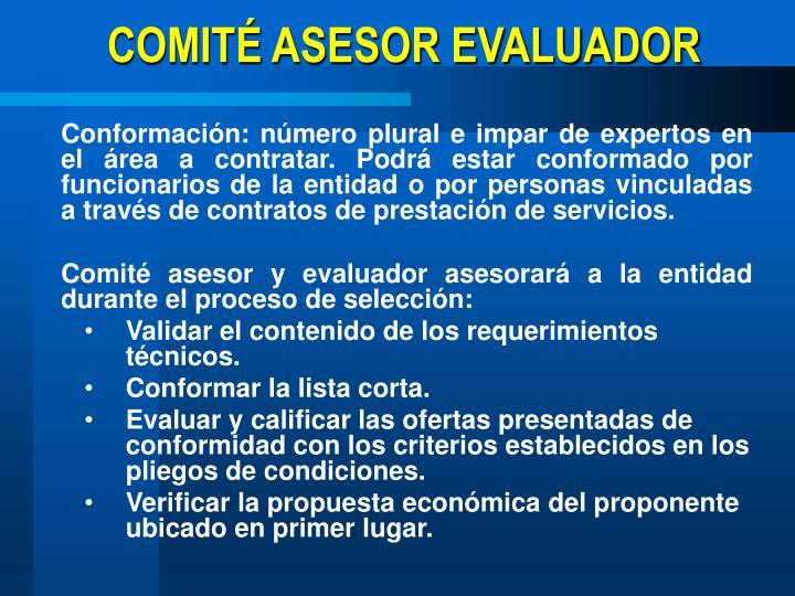 COMITÉ ASESOR EVALUADOR