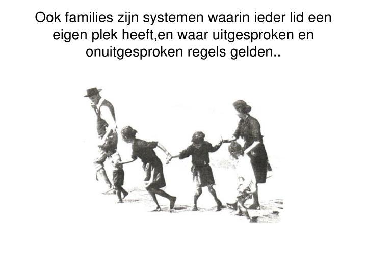 Ook families zijn systemen waarin ieder lid een eigen plek heeft,en waar uitgesproken en onuitgesproken regels gelden..