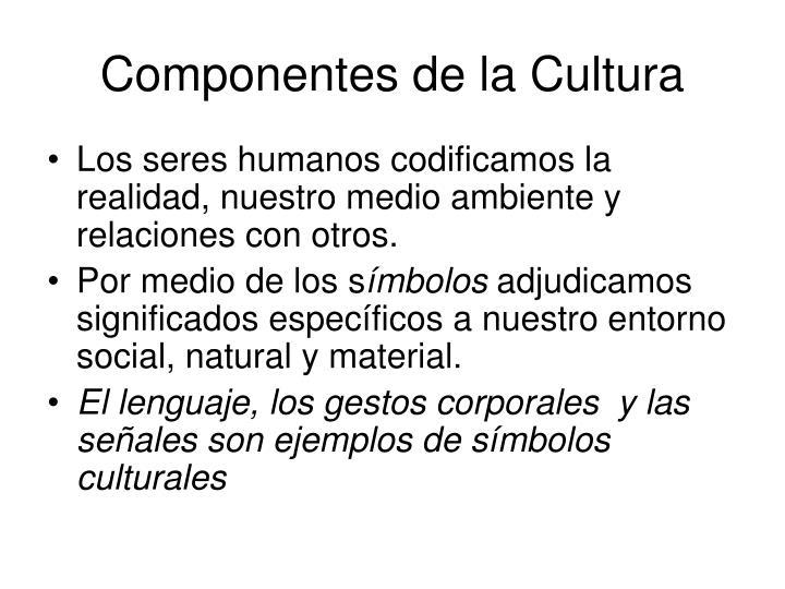 Componentes de la Cultura
