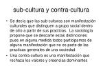 sub cultura y contra cultura