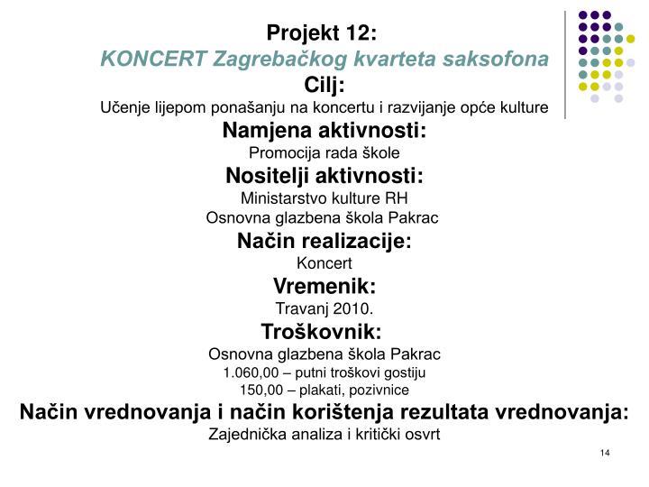 Projekt 12: