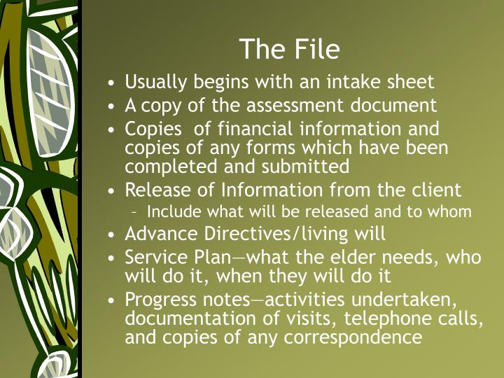 The File