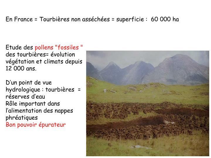 En France = Tourbières non asséchées = superficie :  60000 ha