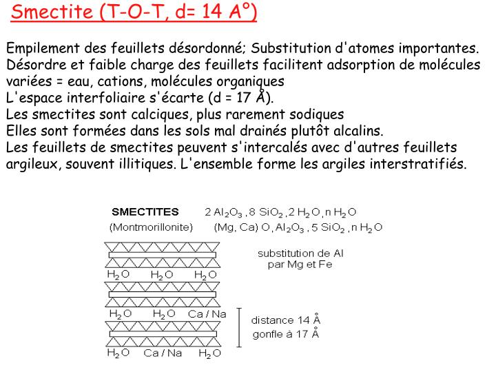Smectite (T-O-T, d= 14 A°)