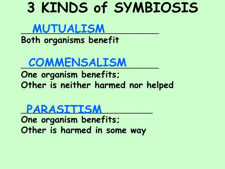 3 KINDS of SYMBIOSIS