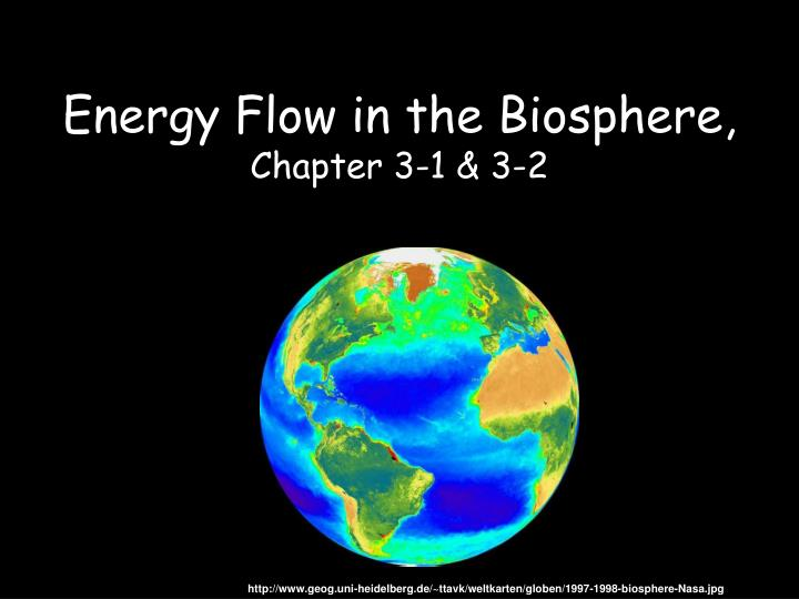 Energy Flow in the Biosphere,