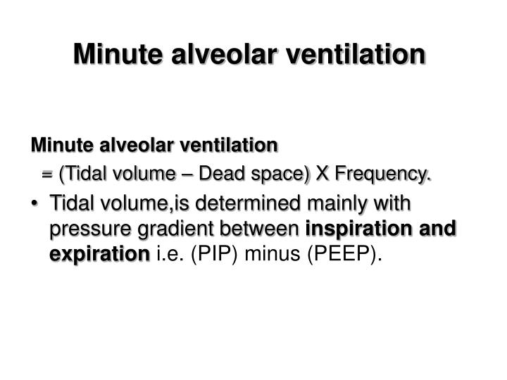 Minute alveolar ventilation