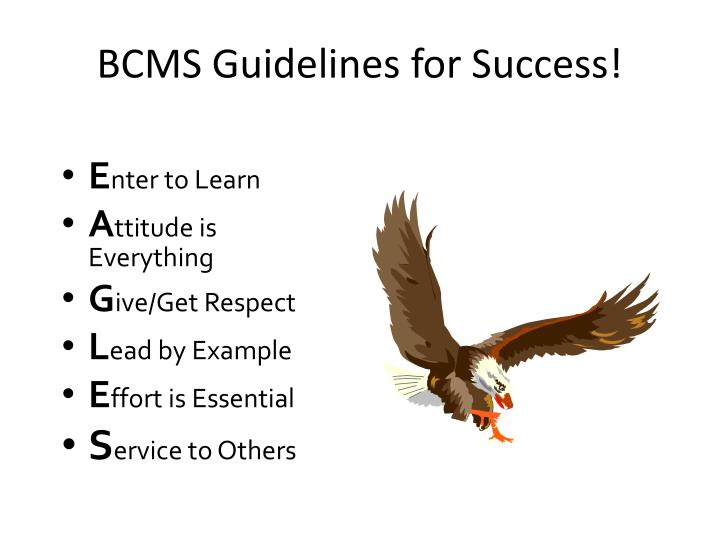 BCMS Guidelines for Success!