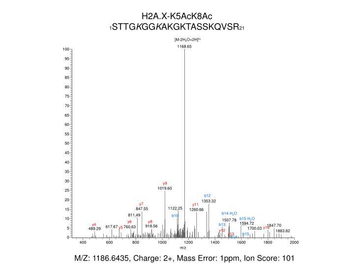 H2A.X-K5AcK8Ac