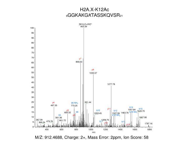H2A.X-K12Ac