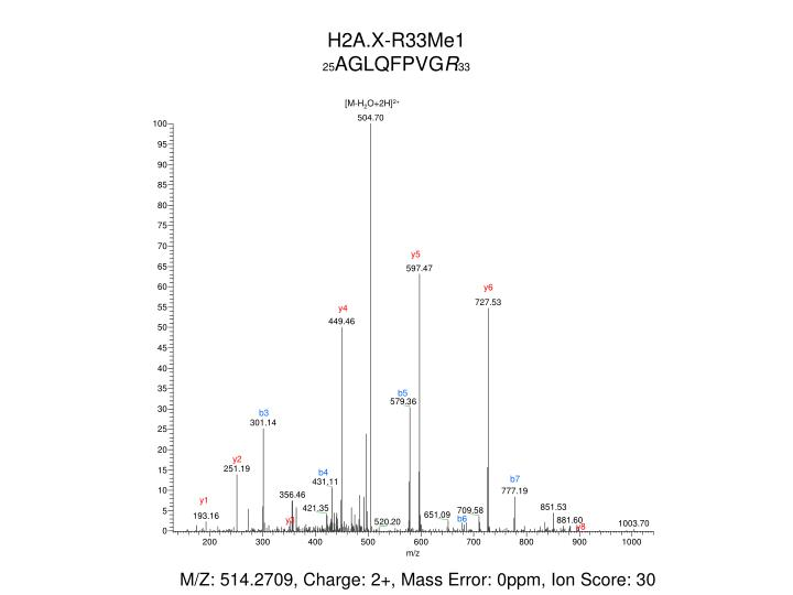 H2A.X-R33Me1