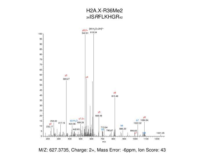 H2A.X-R36Me2