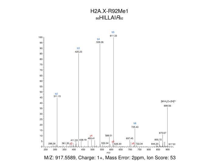 H2A.X-R92Me1