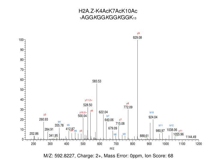 H2A.Z-K4AcK7AcK10Ac
