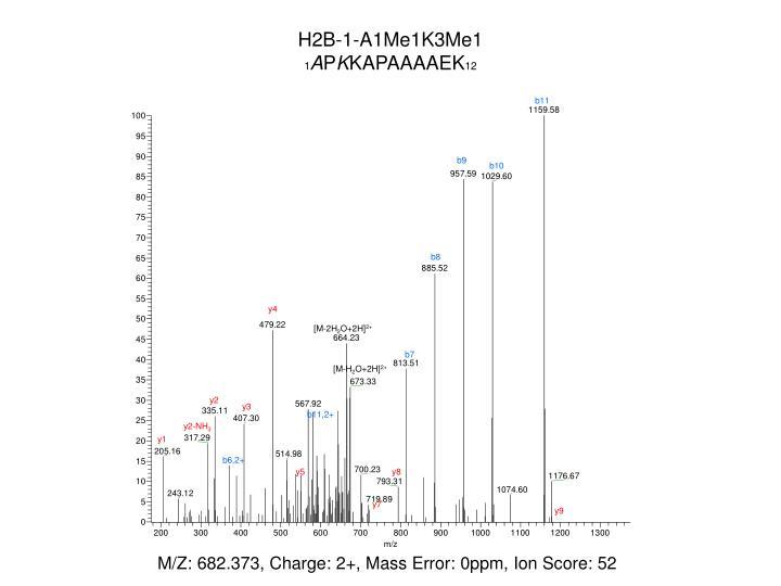 H2B-1-A1Me1K3Me1