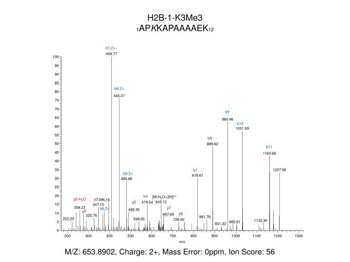 H2B-1-K3Me3