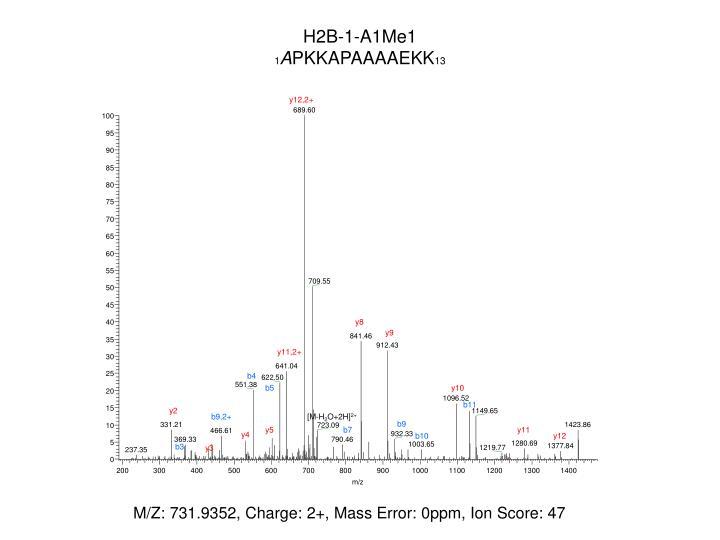 H2B-1-A1Me1