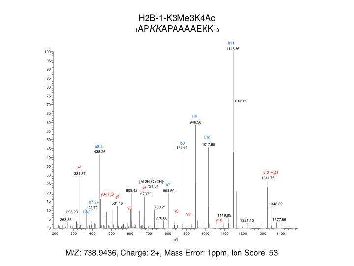 H2B-1-K3Me3K4Ac