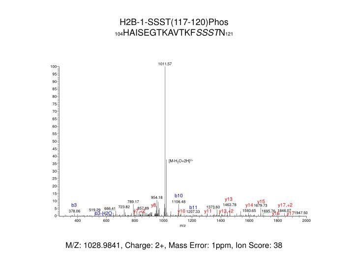 H2B-1-SSST(117-120)
