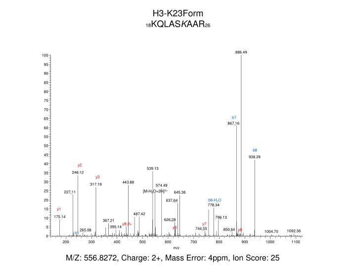 H3-K23Form