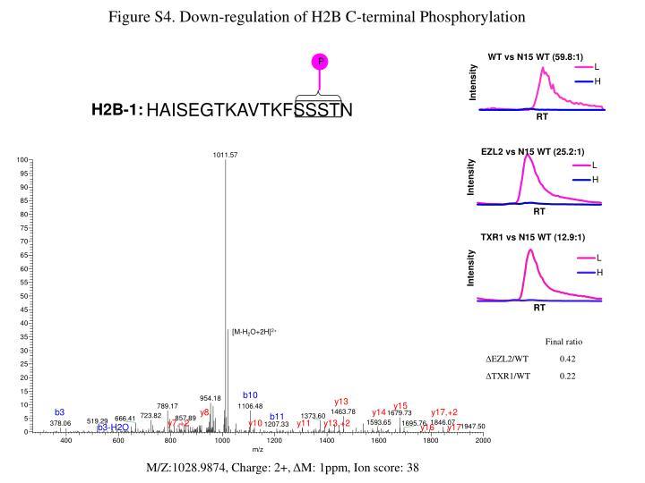 Figure S4. Down-regulation of H2B C-terminal Phosphorylation