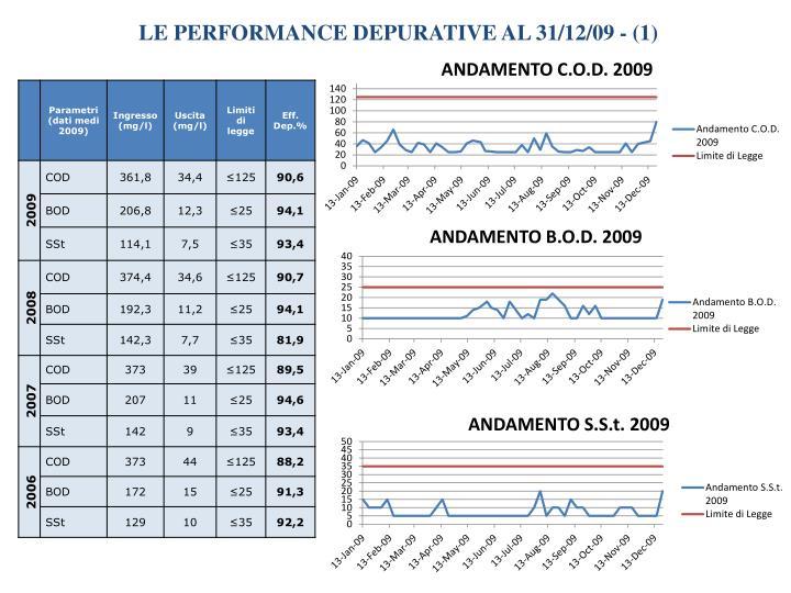 LE PERFORMANCE DEPURATIVE AL 31/12/09 - (1)
