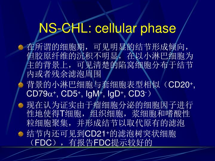 NS-CHL: cellular phase
