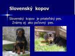 slovensk kopov