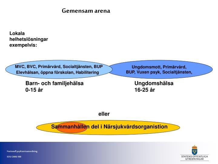 MVC, BVC, Primärvård, Socialtjänsten, BUP